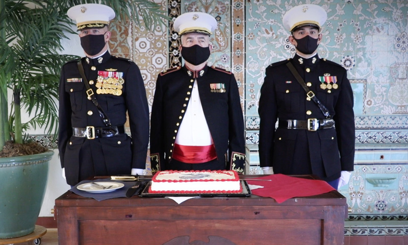 U.S. Marine Corps Birthday and Veterans Day